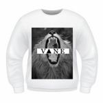 vane1
